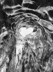 Heart-of-Jokulsarlon-1